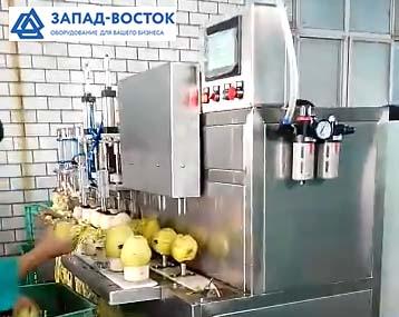 Машина для снятия кожуры с яблок и удаления сердцевины